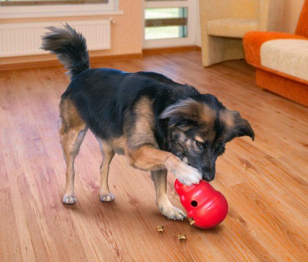 Juguete para perro KONG Wobbler La Serena