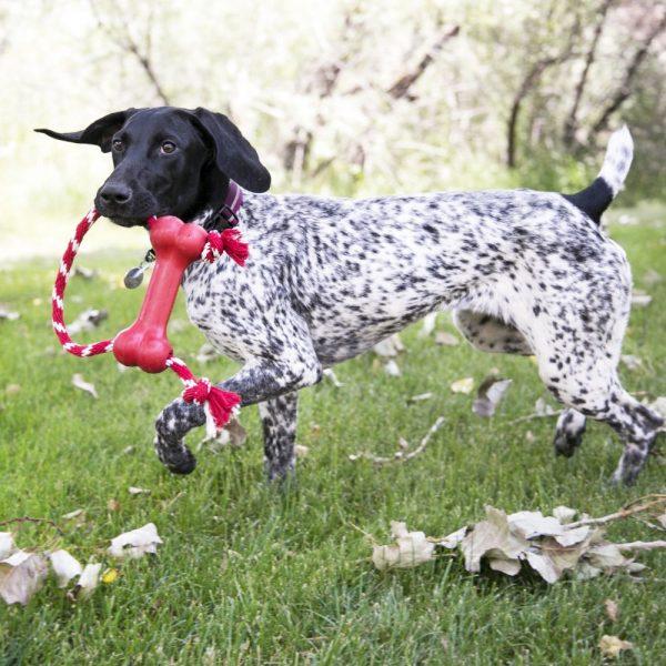 Hueso de juguete para perro La Serena